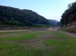 知明湖キャンプ場(湖面方向に下ったところ)