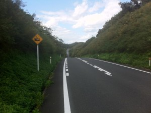 スーパー農道(勾配はあるものの気持ち良い道です)