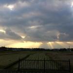 [自転車旅行記] 2012/11/26:長崎県島原市~諫早市(道路公園)
