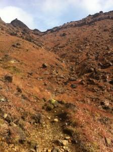 登山道(その3)