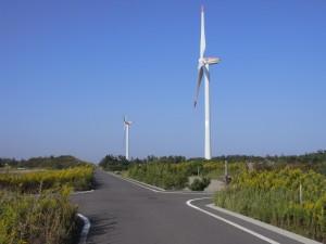 道中の風車