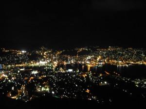 稲佐山からの夜景(ピンボケですみません)