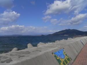 小浜マリンパークから海側の眺め