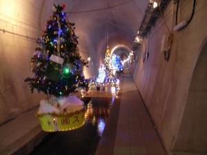 スペースを利用してクリスマルツリーが展示されていました(テントが寒いわけです)
