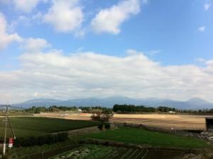 鹿児島空港の周辺を散策(回りに茶畑が見えます)